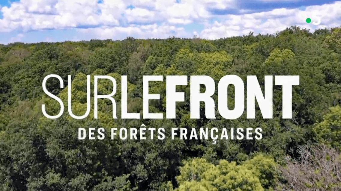 Sur le front des forêts françaises