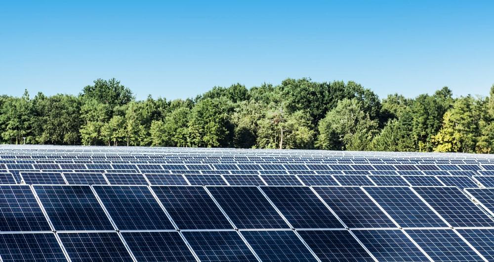 Champ panneaux solaires