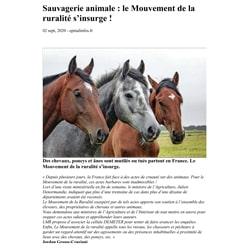 Article epnialinfos.fr